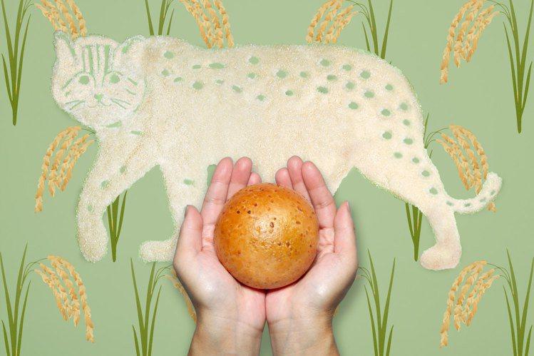 選用生態農業共存的苗栗「石虎米」推出貝果新品「五穀米香」。圖/好丘提供