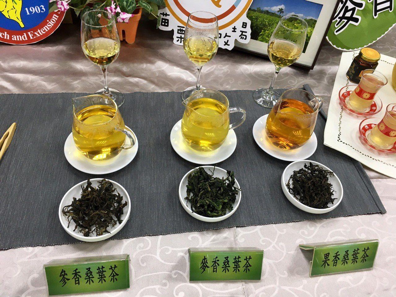 農委會苗栗區農改場與茶改場合作推出的GABA桑葉茶有三種風味,分別為參香、麥香、...