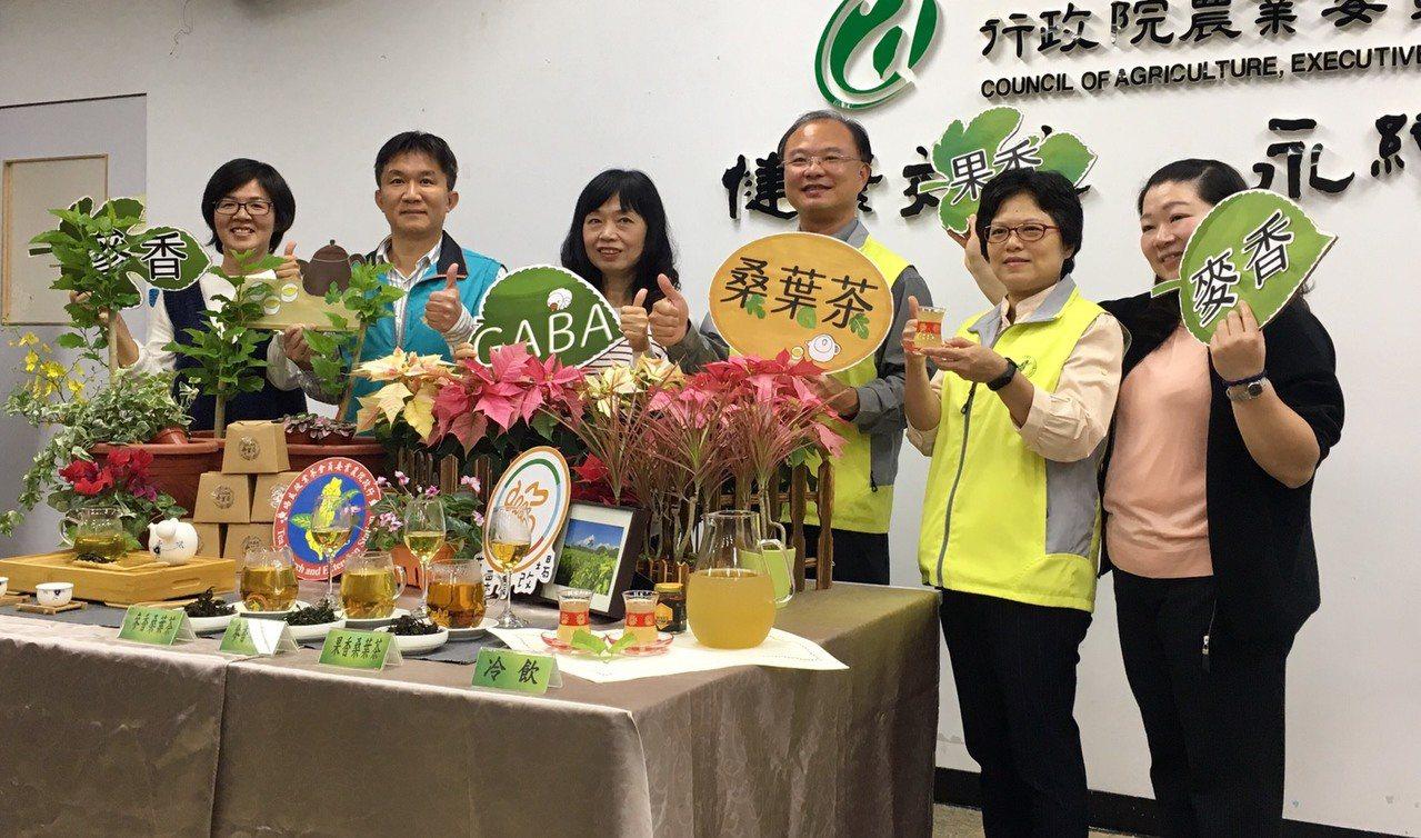 農委會苗栗區農改場與茶改場合作,首次推出導入台灣特色茶製程的「GABA桑葉茶」。...