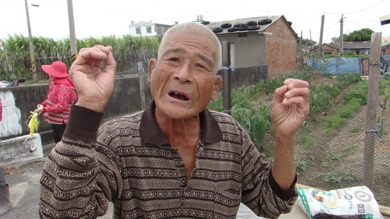 花生價格暴跌,雲林農民徐水源說打了好幾天電話沒人要來收花生,他怕虧損只好低價賣出...