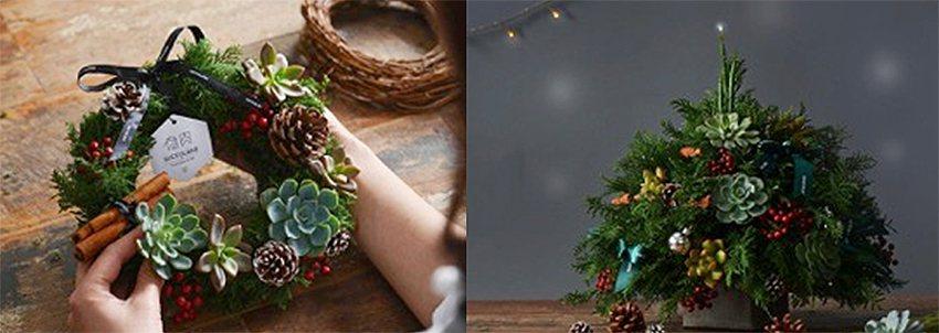 多肉聖誕花圈、多肉聖誕樹。 有肉Succulent & Gift/提供