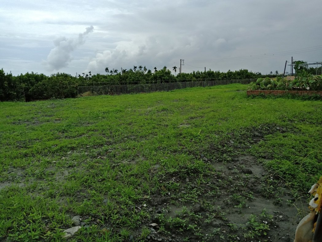 屏東某處農地因為填土不當,不適合大面積耕種而閒置一旁。