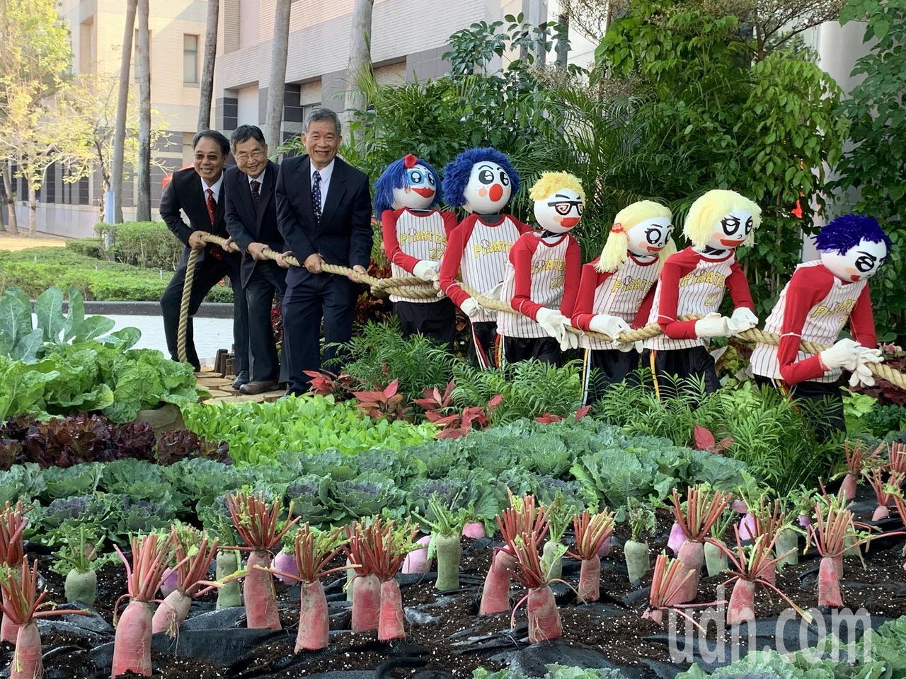 農畜聯合開放日,今年主題為紅十字科蔬菜。記者吳淑玲/攝影