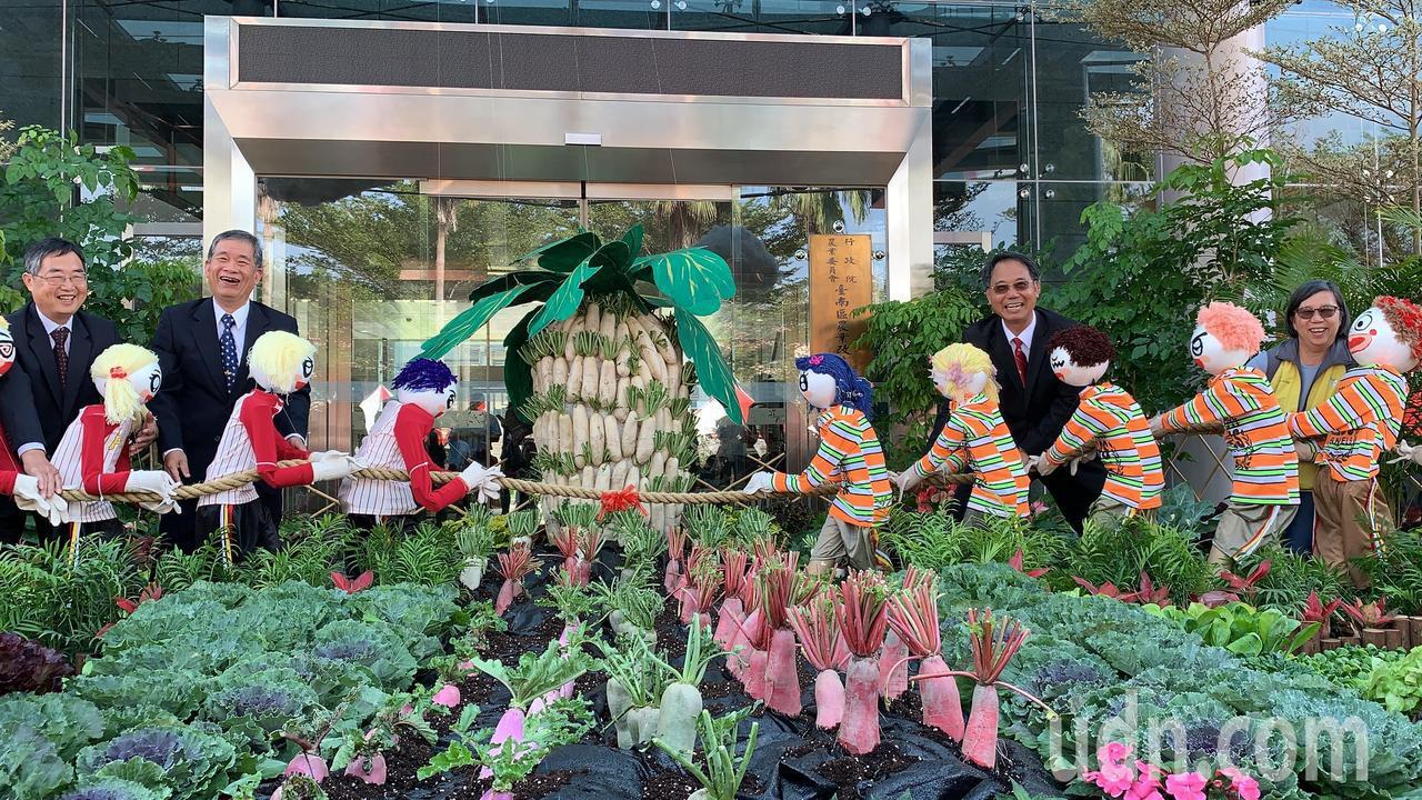 農畜聯合開放日周六登場,有許多沒看過的紅十字科蔬菜。記者吳淑玲/攝影