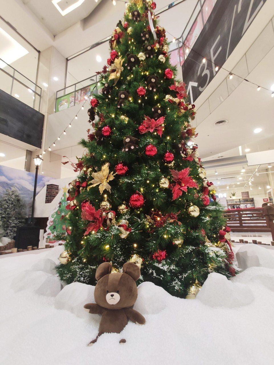5米高的耶誕樹上掛滿小熊學校玩偶。圖/環球購物中心提供