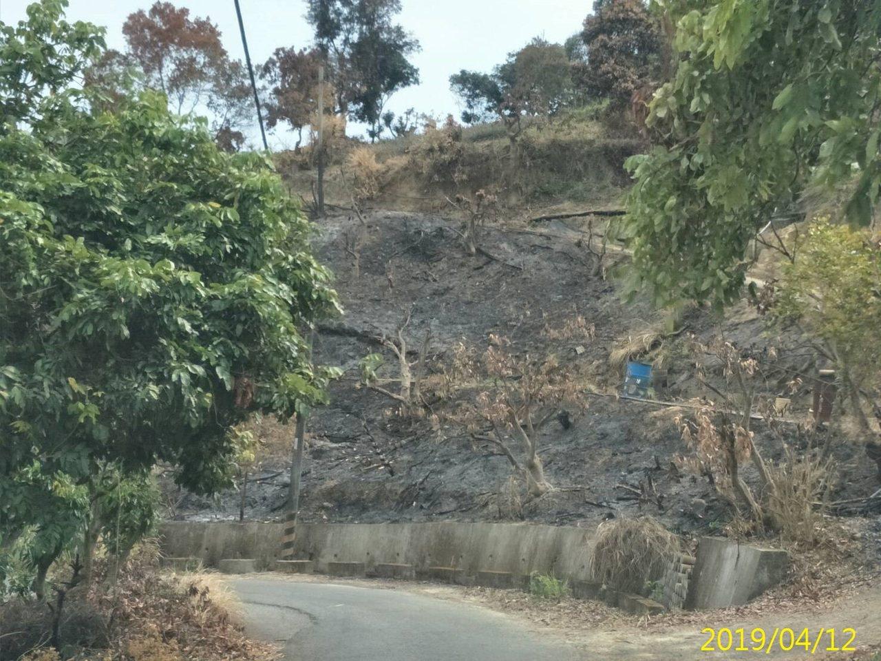衛星火點通報查獲旗山果園農業廢棄物露天燃燒。圖/高雄市環保局提供
