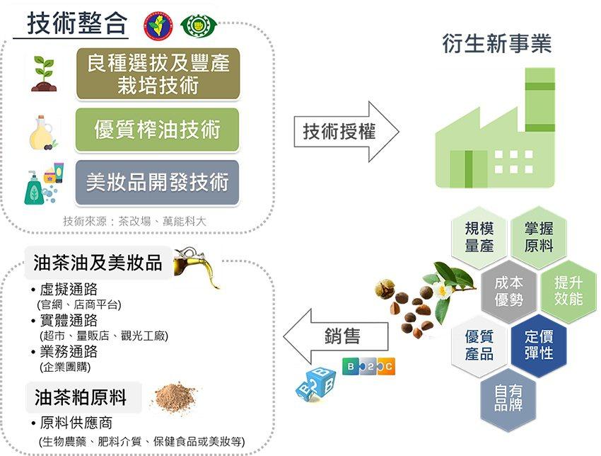 規模化油茶事業營運模式建立。 農科院/提供