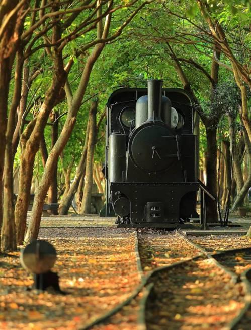 宜蘭原鄉議員陳傑麟批評「太平山森林鐵路」復甦規劃評估,只做了「平原線」,竟沒有把...