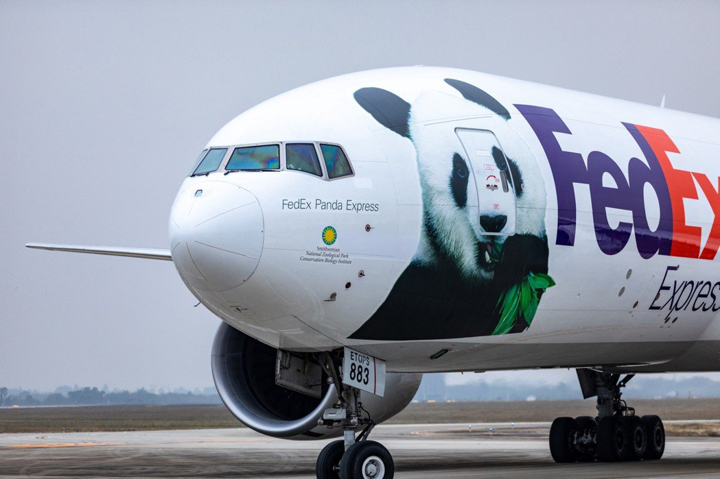 今天,4歲的公熊貓「貝貝」搭乘聯邦快遞波音777F「FedEx熊貓快遞號」專機抵...