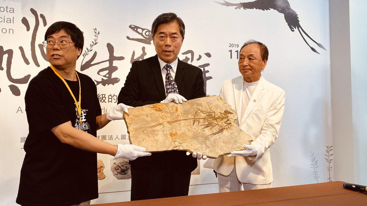 科博館將推出「熱河生物群特展」,昨天開箱白堊紀早期的「顧氏小盜龍」化石,牠體長約...