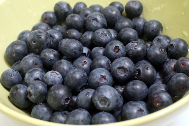 藍莓富含高營養價值。 圖/本報檔案資料