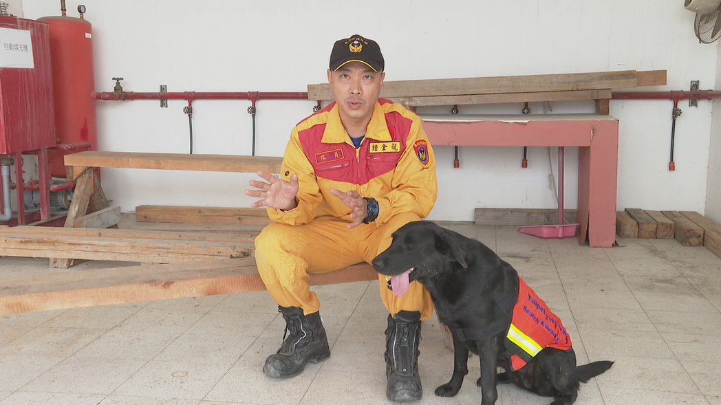 鍾金龍表示,絕大多數的搜救場合不會讓搜救犬穿戴護具,是為了避免被現場鋼筋、木頭勾...