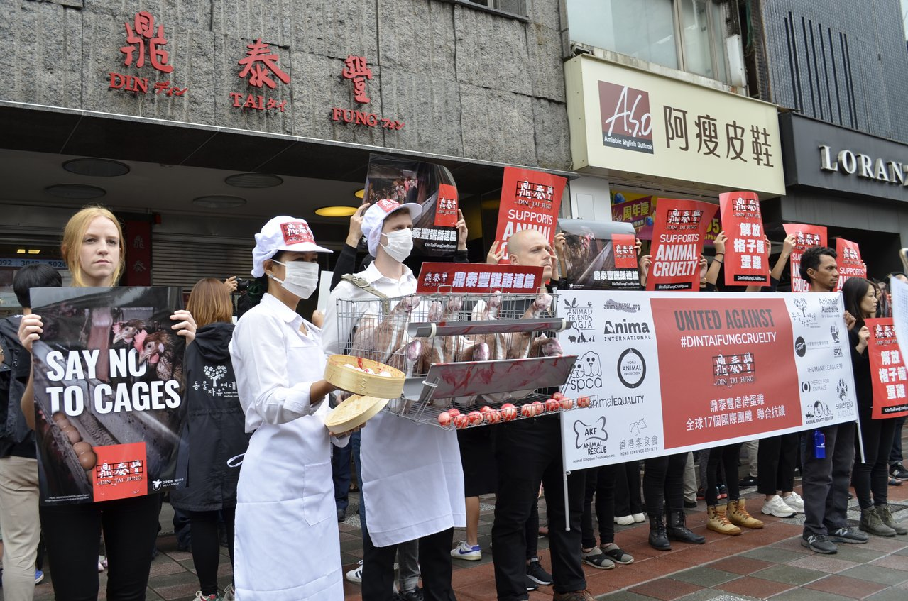 「讓雞展翅國際聯盟」今天向知名餐廳「鼎泰豐」發起全球抗議行動。圖/台灣動物社會研...