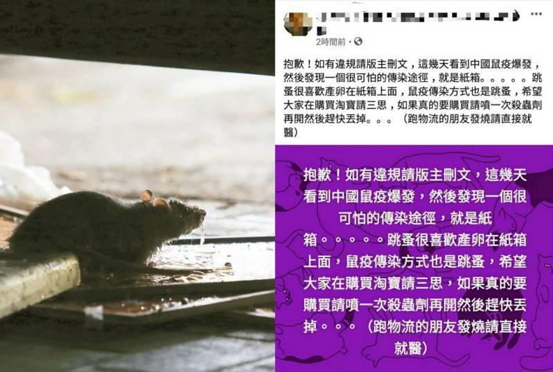 疾管署今特別發文闢謠,感染鼠疫的跳蚤會進入瘋狂吸血狀態,因此不會附著在無法被吸血的包裹,民眾不用擔心鼠疫會透過網購攻進台灣。圖/取自臉書