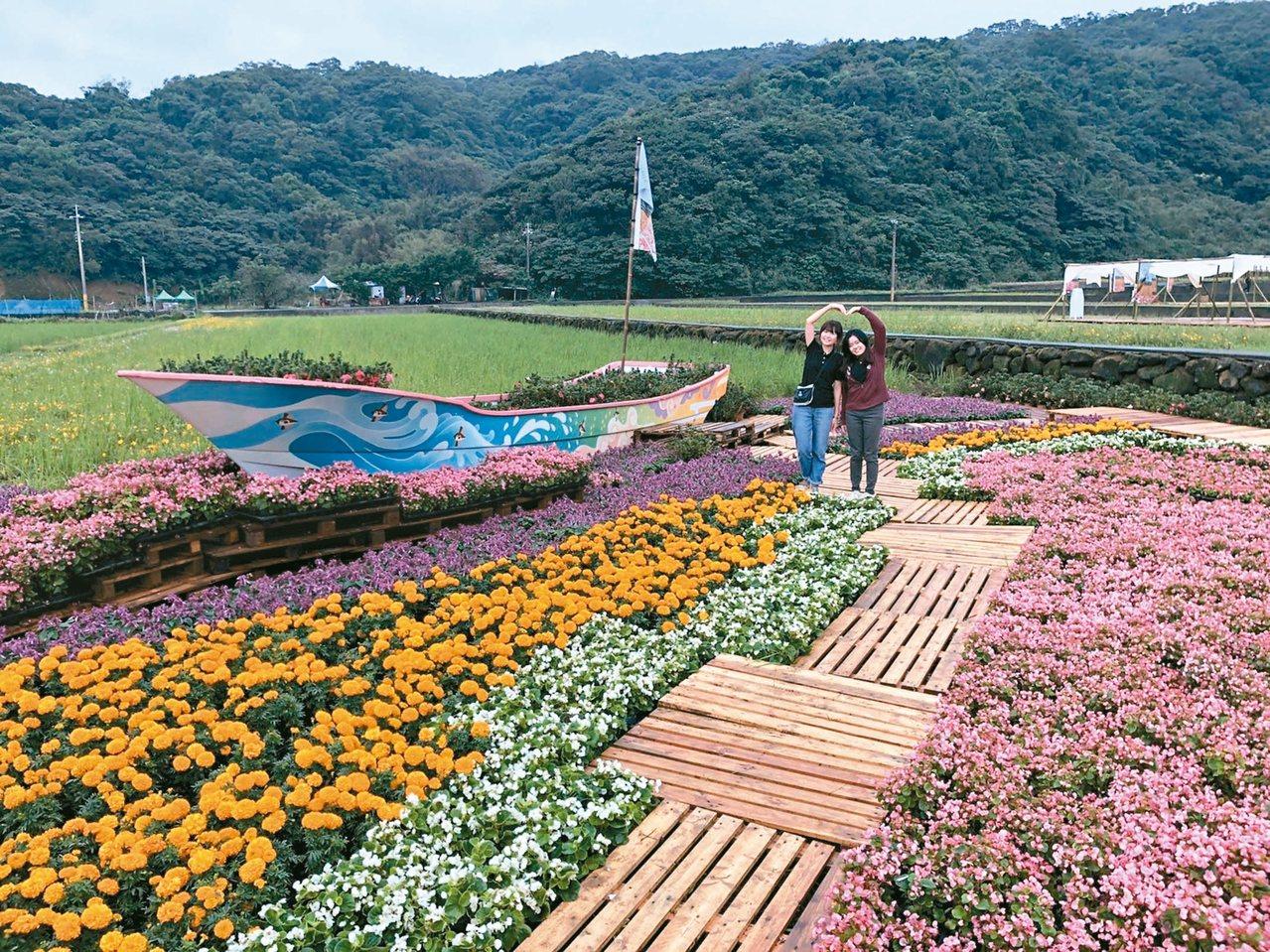 新北景觀處與金山農友合作,在休耕期間種植在秋冬季開花的西洋杜鵑,現場還有打卡花船...