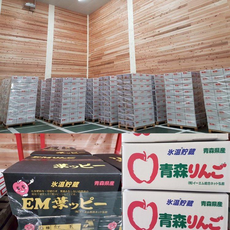 日本青森選果廠運用「冰溫技術」維持蘋果在採收後到賣場上市之間的高保鮮度。記者何雅...