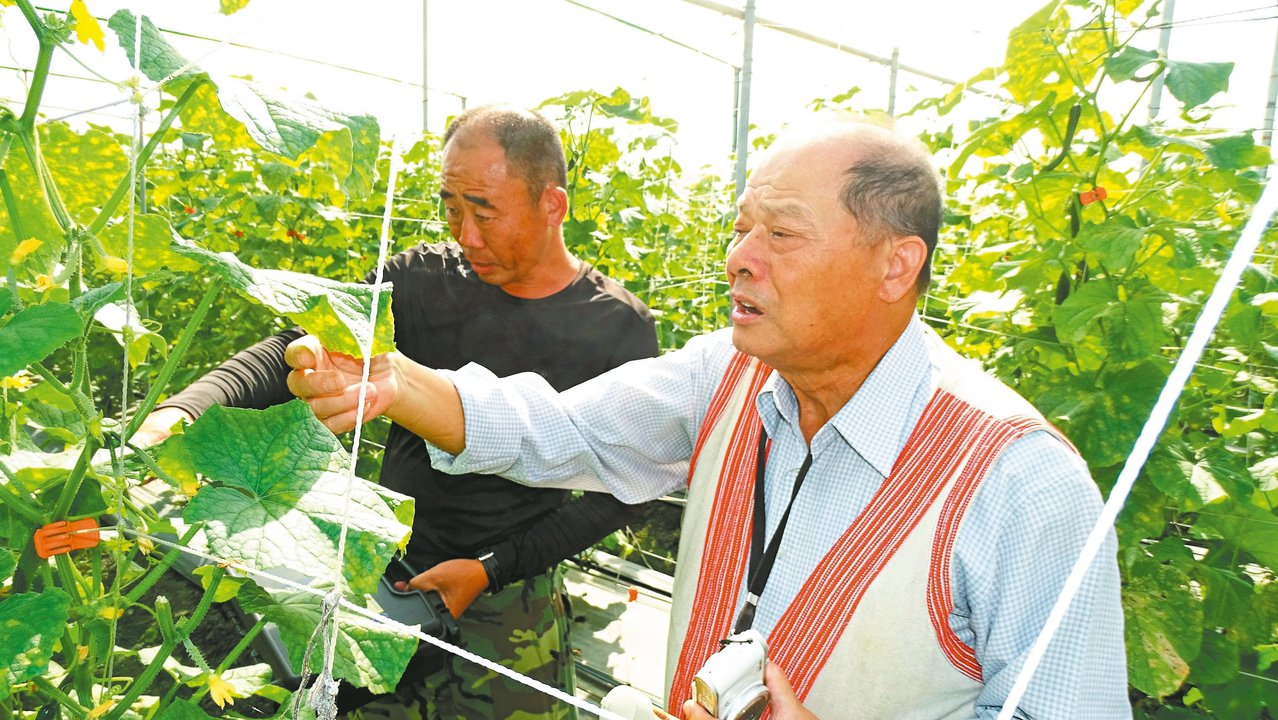 台中區農改場創場元老的高德錚(右),退休後每天開車下鄉幫農民解決農作遭遇問題。 ...