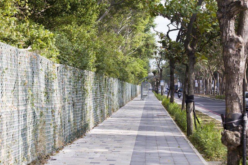 竹市公道五路改善工程將過去超過20年的問題一併解決,共改善1.6公里的人行道,另增設1.6公里自行車道。圖/新竹市府提供