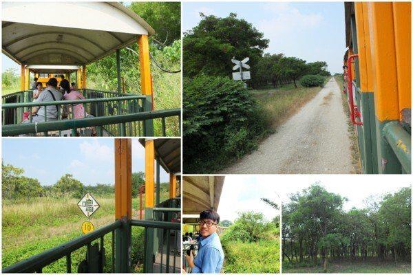 五分車搖搖晃晃帶著轟隆聲行駛在鐵道上,坐在復古座椅欣賞沿途風景,好自然好放鬆。