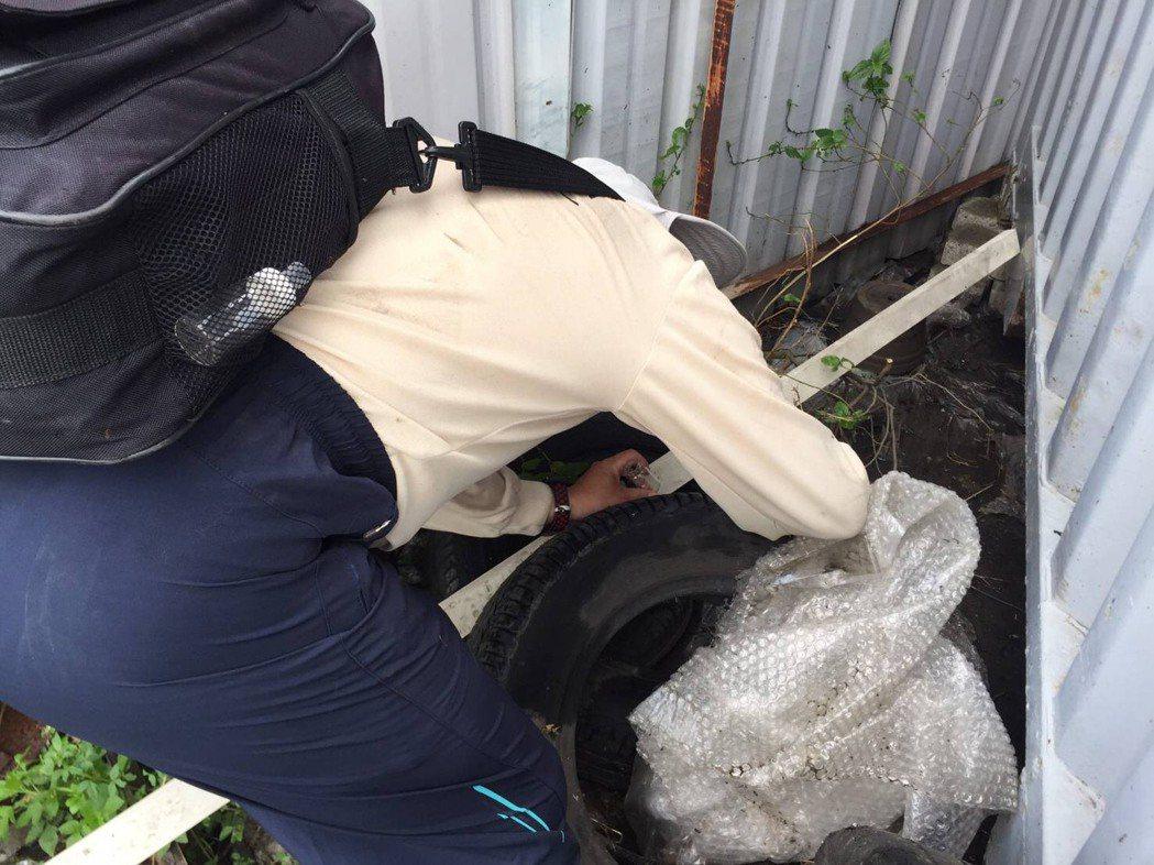 台南市衛生局登革熱稽查人員四處稽查病媒蚊。圖/衛生局提供