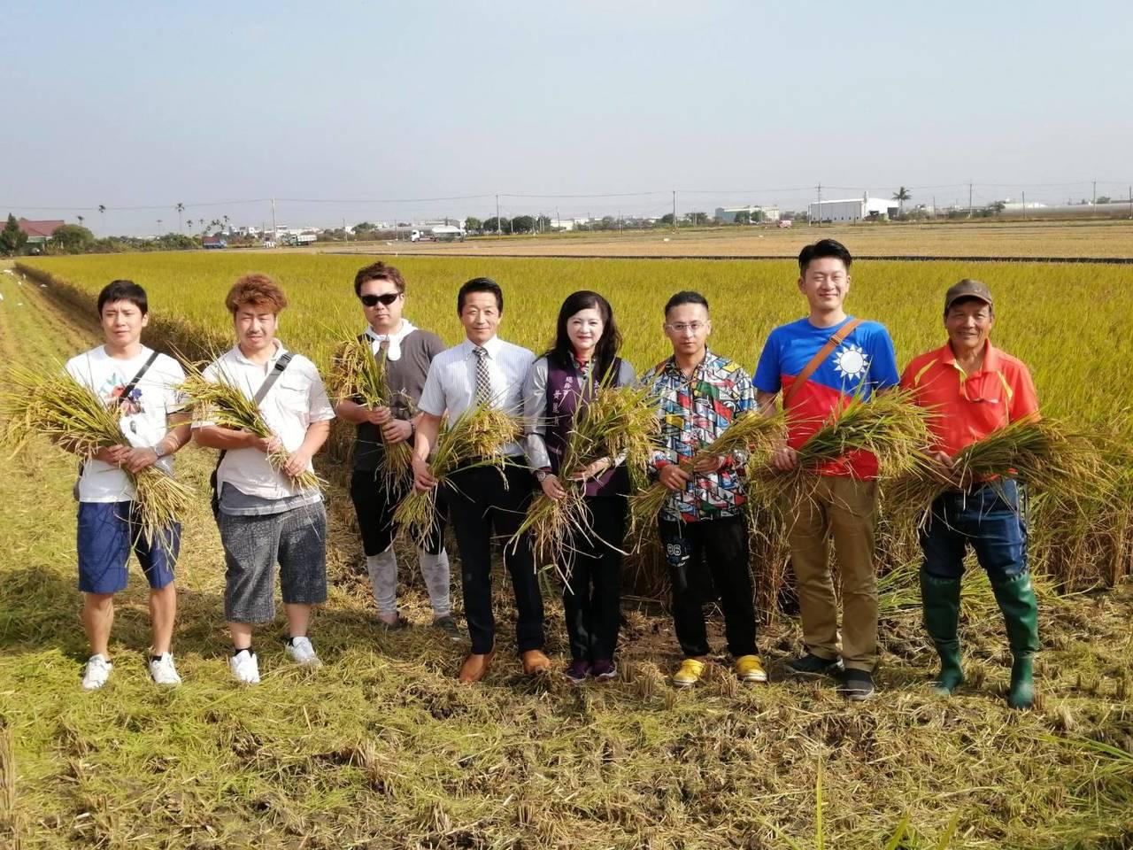 日本青農上午前往太保市梅埔里參觀正在收割中的有機米稻田。圖/太保市農會提供