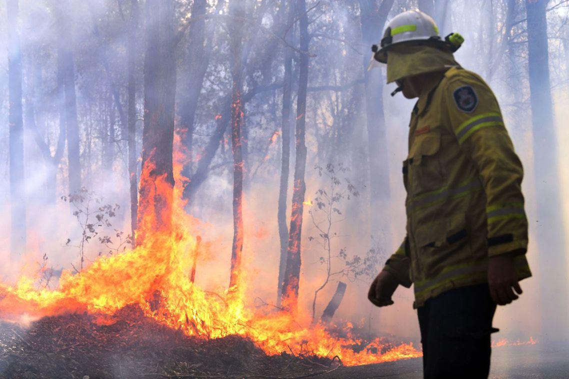 氣候變遷與極端野火可能加劇無尾熊的物種危機。圖為麥覺理港附近森林野火。 圖/法新...