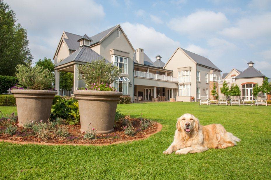 有一對倫敦夫婦開出年薪約台幣126萬元的條件尋找愛犬的照顧人,而獲得這份工作的人也能住進豪宅中。示意圖非文中房屋。圖/ingimage