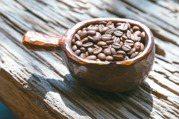 摻假咖啡的黑歷史 台灣也出過「土裡長的咖啡」