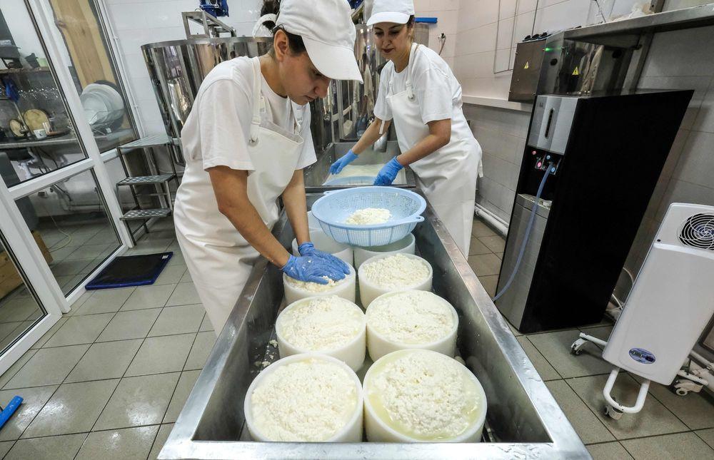 科夫通(右)和助理正在工業城鎮科羅廖夫的工廠製作乳酪。(法新社)