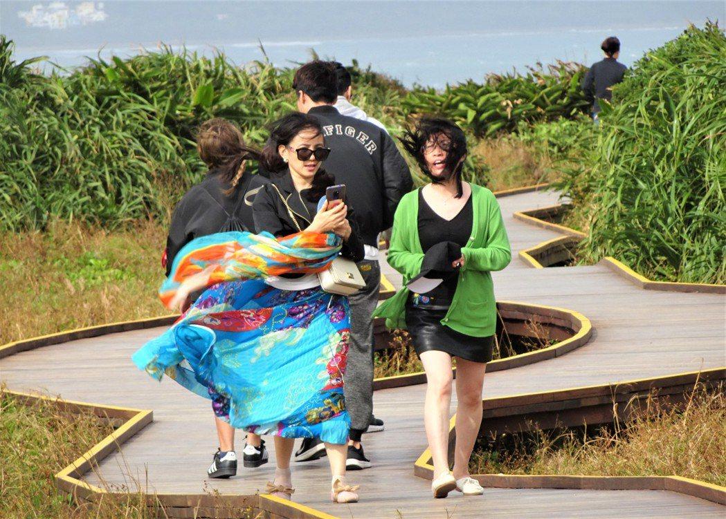屏東恆春半島落山風時大時小,時有時無,最強時風力可達度颱風威力。記者潘欣中/攝影
