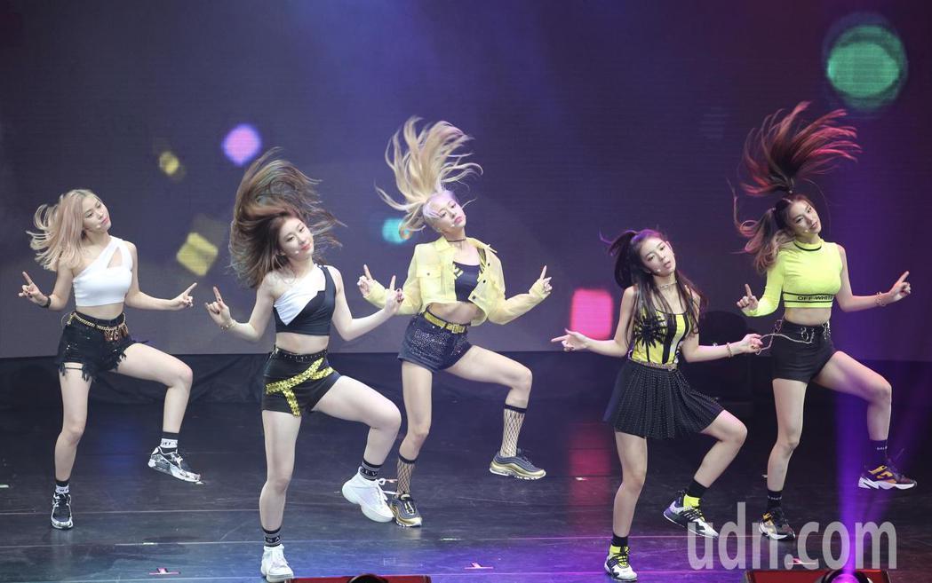 南韓女團ITZY晚間在TICC舉辦粉絲見面會,一開場她們就帶來兩首舞曲,勁歌熱舞...