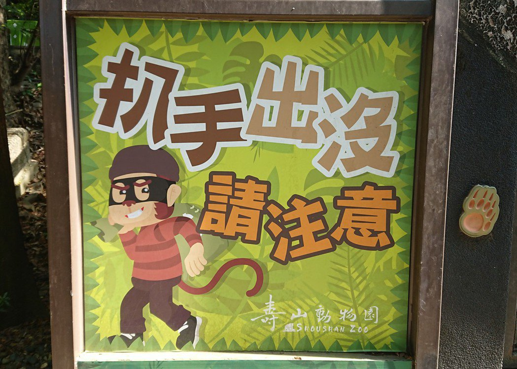 高雄市壽山動物園入口處旁的園道有幅「扒手出沒請注意」插畫,主角是一隻獼猴,讓遊客...