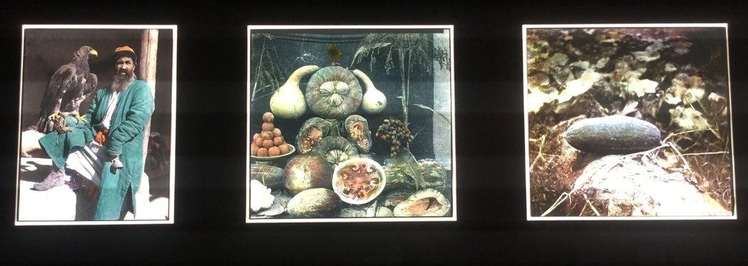 在展場的一個角落燈箱,展示著六張一組的彩色照片,眼尖的訪客或可從照片中人物的神韻...