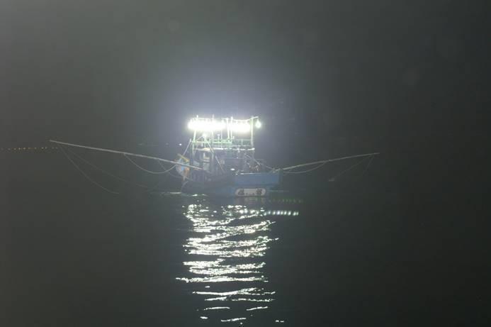 農委會水試所與中央氣象局合作,由氣象局提供台灣北部海面水溫預測值,利用水試所研發的資源變動預測模式,預測今年初台灣北部海域鎖管魚況,確認今年全年漁況較去年度為差。圖/水試所提供