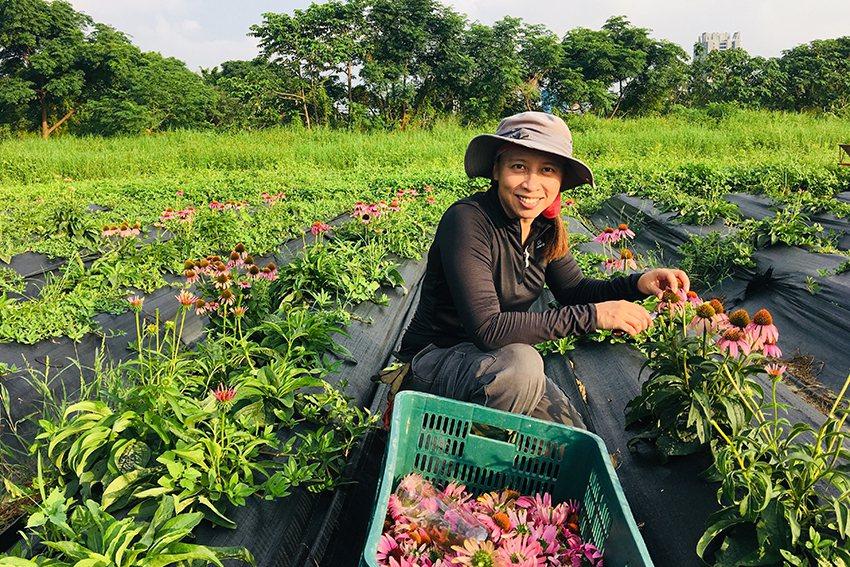 草本誠食創辦人葉芷妘與其有機農場。 桃園市政府青年事務局/提供