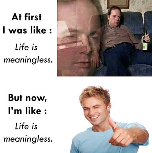 以前的我:人生沒有意義;現在的我:人生沒有意義。 圖:Reddit@u/nikk...