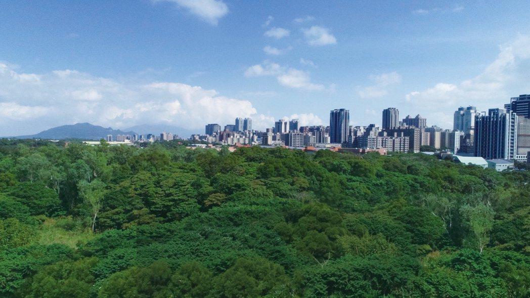 該案靠近森林保護區第一排,綠海景觀一覽無遺。圖/業者提供