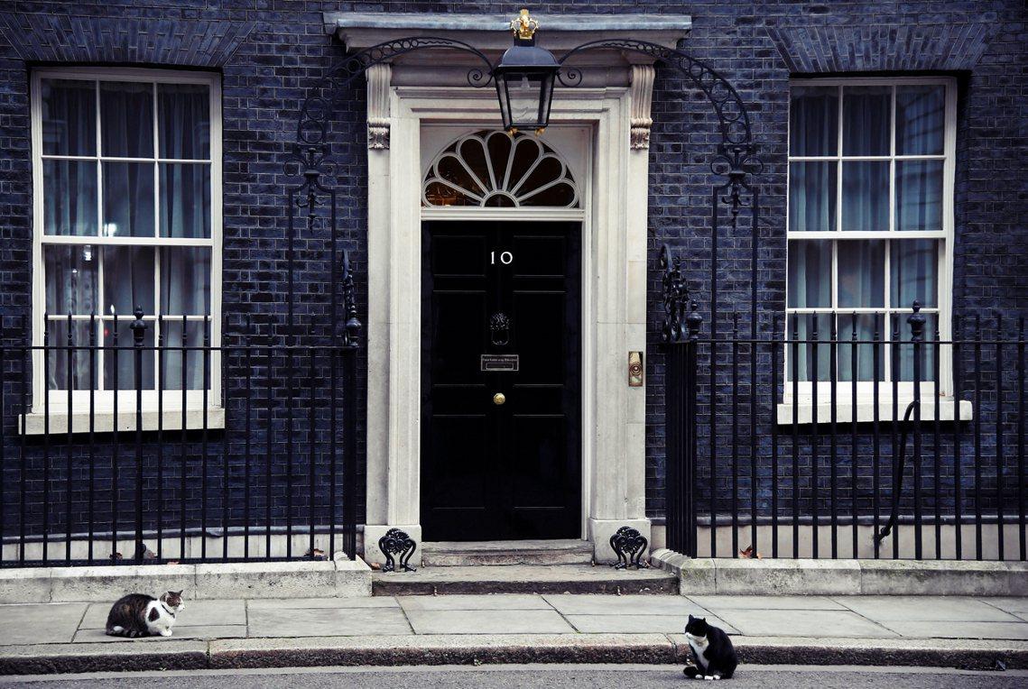賴瑞貓與帕默斯頓,兩貓同為捕鼠官。英國外交部與唐寧街10號也只有一街之隔。 圖/...