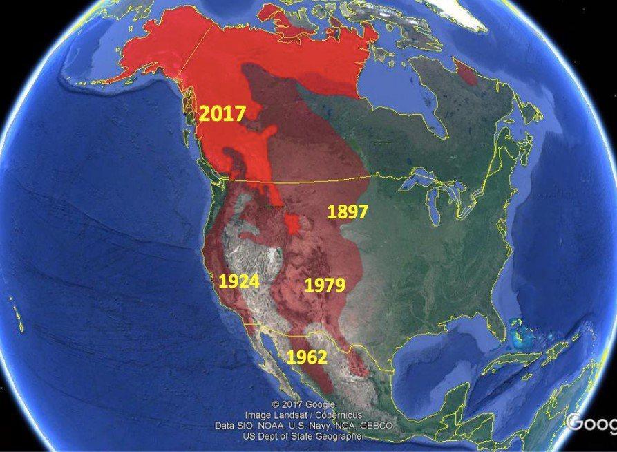 淺紅色為棕熊1800年代分布,深紅色為2017年分布,年份為各地棕熊絕跡的時間。 圖/Bruce  McLellan《與熊熊大師有約》簡報