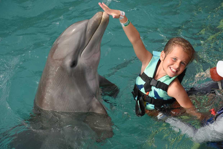 英國一名女童與家人一起參加跟海豚「共游」的活動,卻突然被海豚拉近水底。圖擷自太陽...