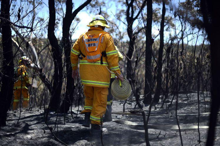 雪梨藍山地區遭火噬,部分林地被燒光。法新社