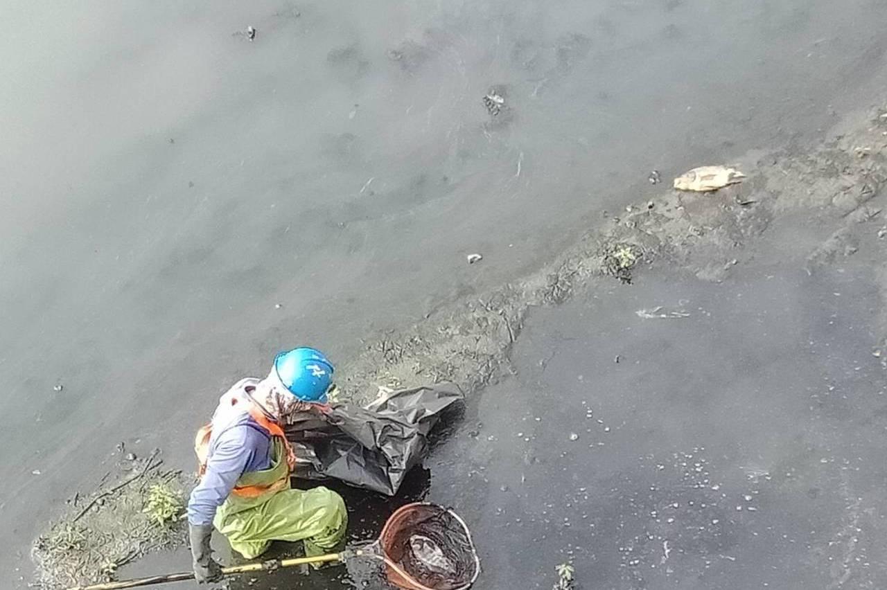 高雄通過鳳山溪劃定水汙染管制區 水汙法從嚴開罰汙染