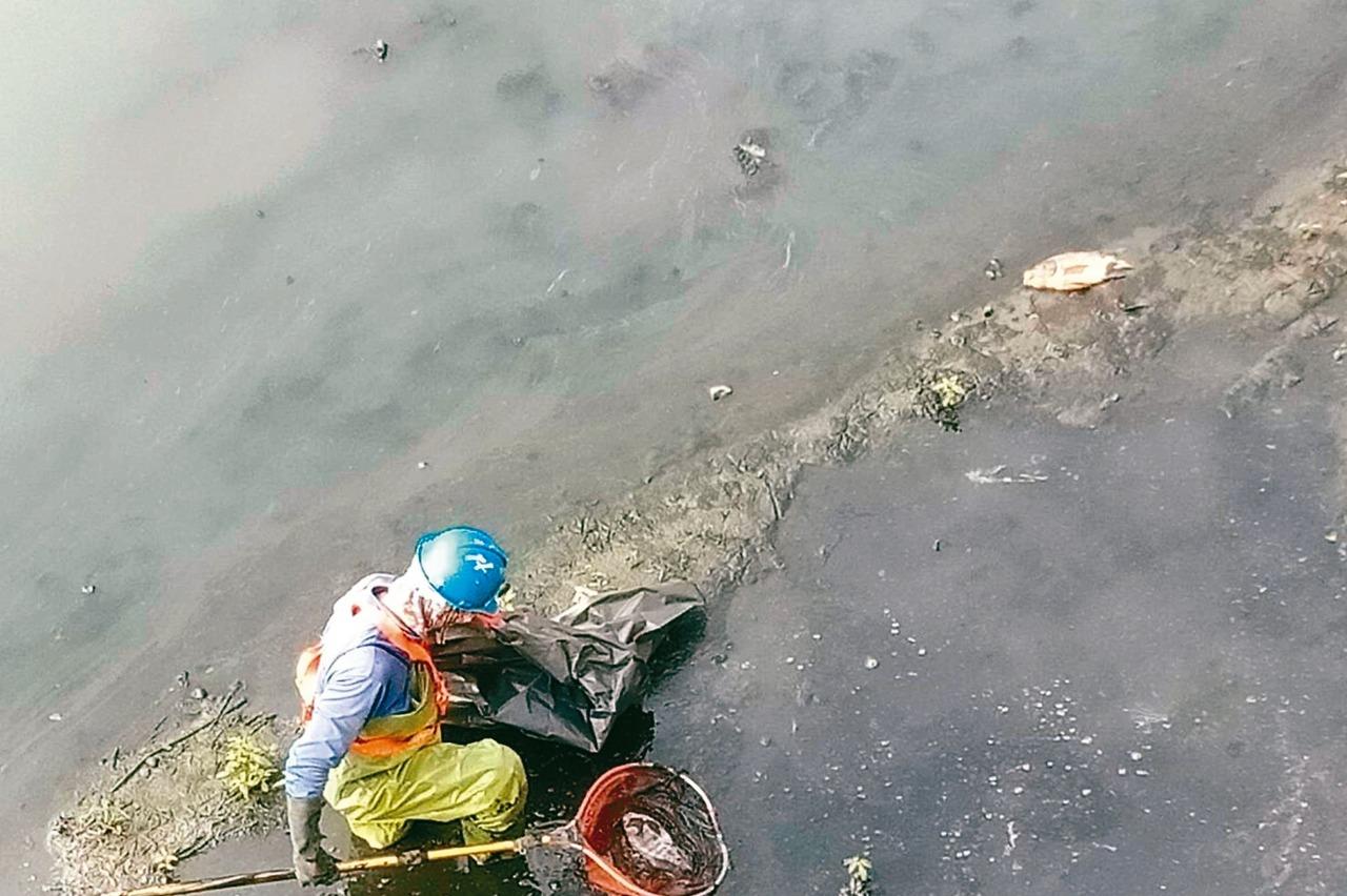鳳山溪大東橋上游 畫水汙染管制區