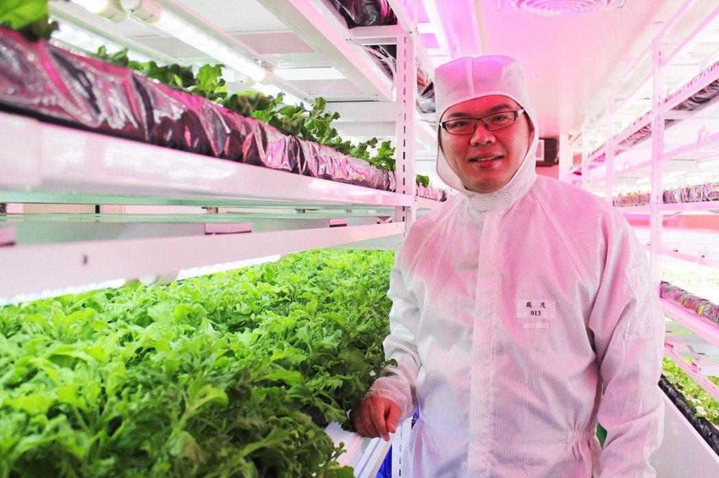 庭茂總經理羅信沂建置植物工廠栽培無毒、無農藥、無重金屬污染的產品,在潔淨室裡種植...
