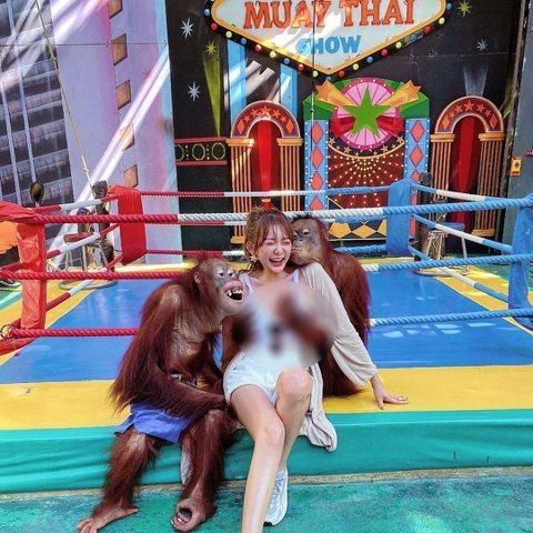9年前友網紅正妹赴印尼峇里島知名景點「聖猴森林公園」(Sacred Monkey Forest)遊玩,慘遭當地猴子襲胸險走光,還因此爆紅。最近網路上也瘋傳一名雪乳正妹,在與兩隻猩猩合照時,豈料卻慘遭...
