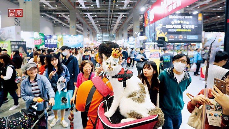 全台寵物展1年上看20檔,更有策展單位看準年年成長的貓奴消費支出,將推出貓的獨立...