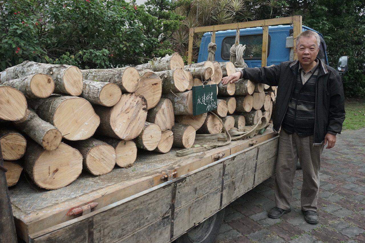 花蓮林農吳茂坤獲林管處媒合販售楓香段木,他覺得收益還不錯。記者王燕華/攝影