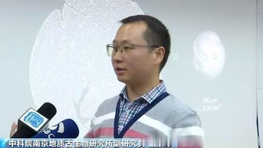 中國科學院南京地質古生物研究所副研究員殷宗軍。央视新闻客户端