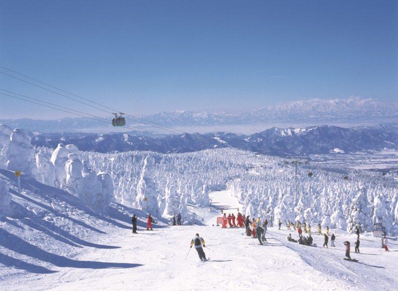 藏王滑雪場名列十大雪場之一,知名度極高。 圖/雄獅旅遊提供