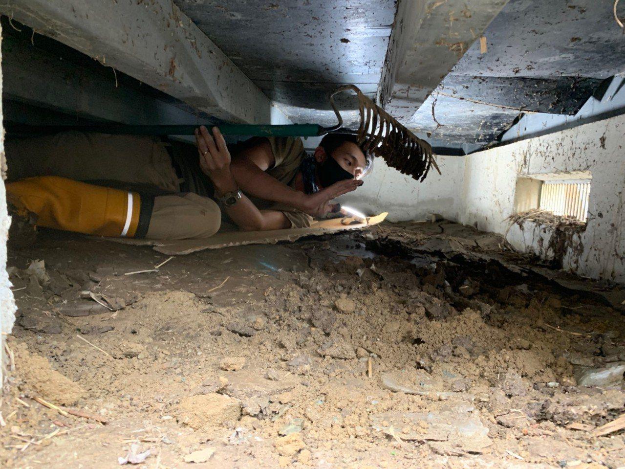 台南人陳一銘上個月組成志工團隊,前往日本丸森,協助當地水災善後,志工鑽進房子底下...